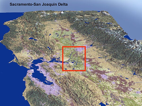 Experts fear impacts of quake on Delta