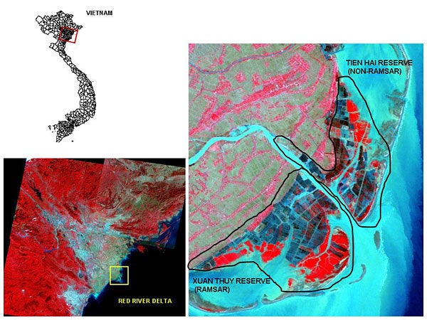 Satellite images documents the loss of mangrove habitat in Vietnam's Xuan Thuy and Tien Hai forest reserves