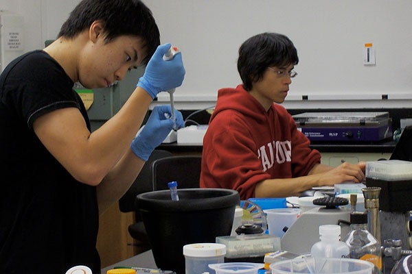 Students Bobby Wei and Mark Fang in lab