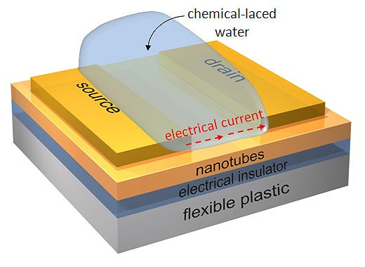 A diagram of a nanotube transistor on a flexible chip for detecting toxins or explosives in a water sample