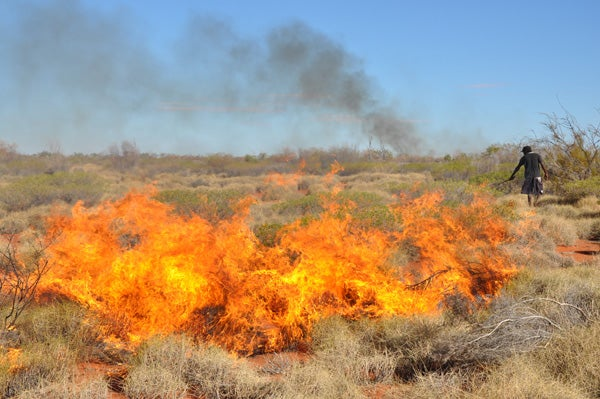 Martu hunter Burchell Taylor burns a clump of spinifex grass to reveal lizard burrows in Australia's Western Desert.