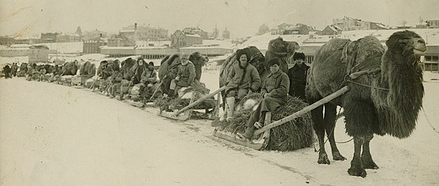 An ARA transport column on the frozen Volga, Tsaritsyn