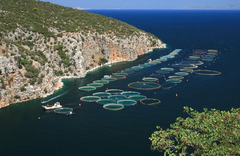 Fish pens off the coast of Greece