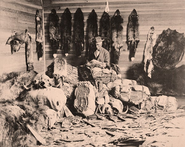 Photo of trader with furs
