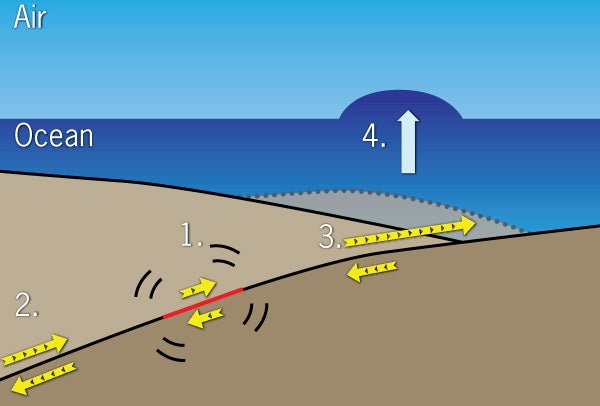 Diagram of the earthquake, tsunami