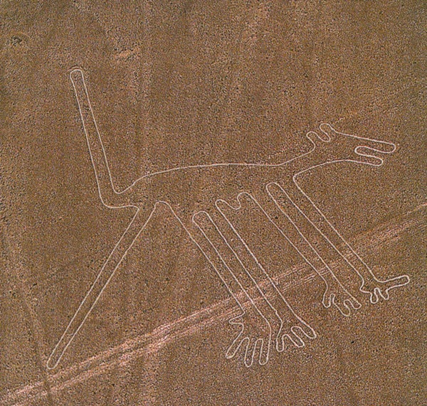 The picture of a dog as part of the Nazca Lines geoglyphs, Peru, ca. 700–200 B.C.