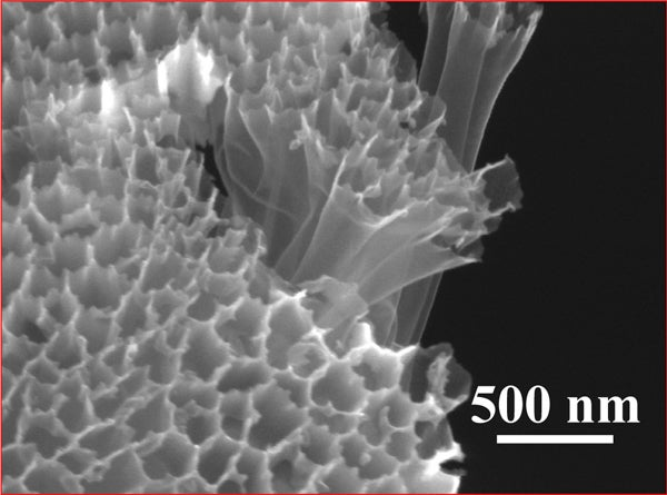 A scanning electron microscope photo of hollow carbon nanofiber-encapsulated sulfur tubes