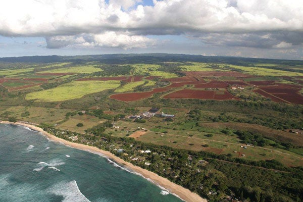 Prime farmland on the north shore of Oahu