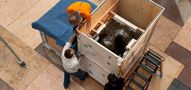 Workers prepare to remove 'The Thinker' from its crate