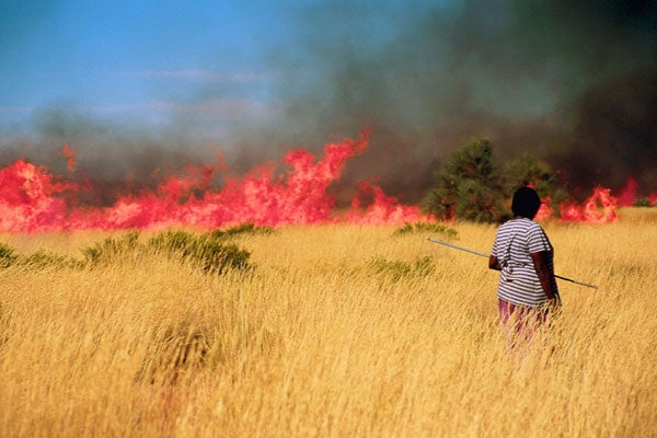 Nyalangka Taylor, near Parnngurr Aboriginal Community in Australia's Western Desert, waits behind a burn to begin searching for monitor lizard in the 'nyurnma' - a freshly burned patch of land.
