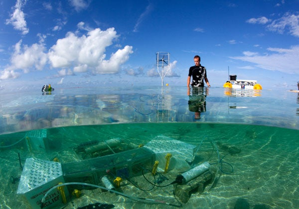 Researcher conducting ocean acidification experiment off Heron Island, Great Barrier Reef, Australia.