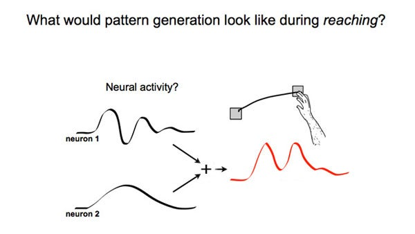 Graphic illustration of neural rhythms for reaching.