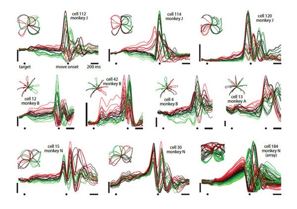 nIn a series of striking graphs, the Stanford team plotted the signals from individual neurons in the motor cortex as monkeys completed a series of reaches.