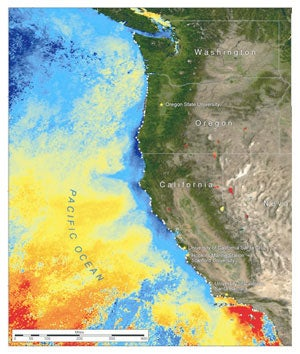 Map showing ocean temperatures along the west coast of the United States. Blue represents the cooler surface temperatures of the California Current.