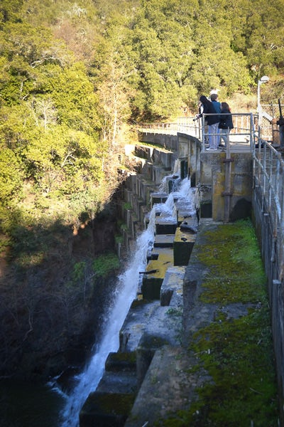 Media representatives were given a tour of the Searsville Dam by members of the Searsville Steering Committee and the Searsville Alternative Study Working Group.