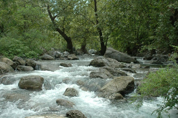 A stream in Monterrey, Mexico.