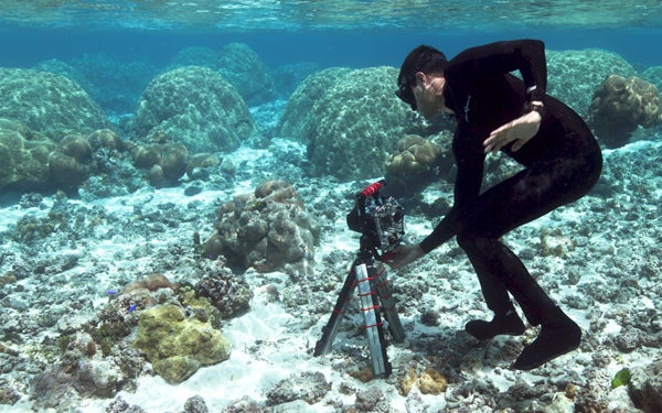 Stanford drones open way to new world of coral research dan griffin coral reef sciox Image collections