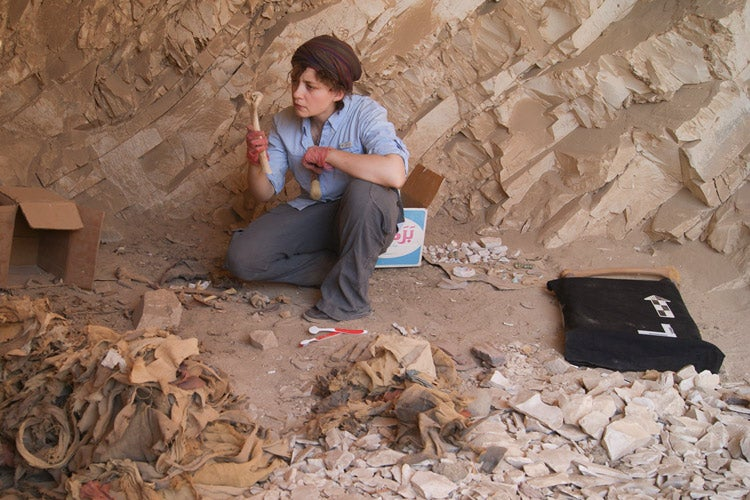 archaeology study of human life Student life students the programme of study will provide the student with a sound knowledge of from human evolution to forensic archaeology.