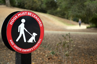 dogs must be leashed sign / Kate Chesley