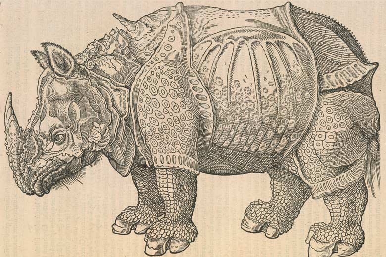 Fantastical image of a rhinoceros