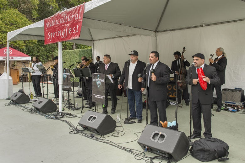 musical ensemble performing at Multicultural Springfest 2015 / L.A. Cicero