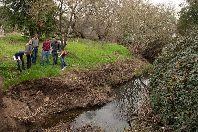 Professor and students on the bank of a small creek.