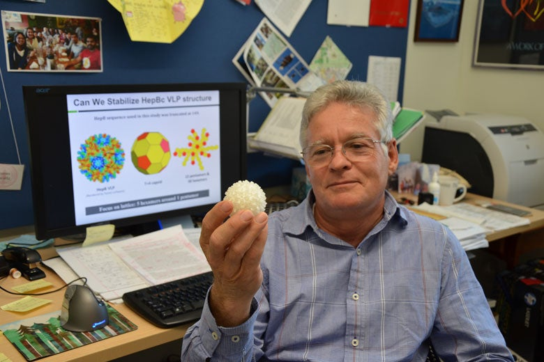 Professor James Swartz holds an enlarged replica of a virus-like particle.
