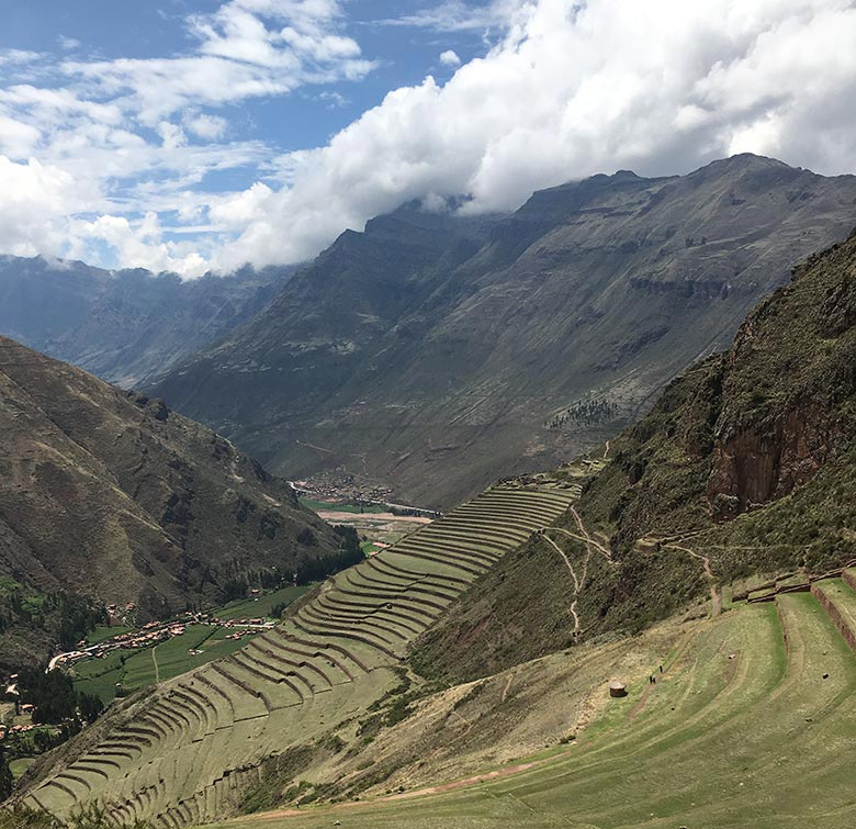 Terraced farm fields in South America