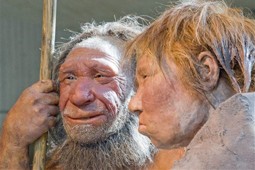 reconstruction of Neanderthal man and woman at the Neanderthal Museum in Mettmann, Germany / AP Photo/Martin Meissner