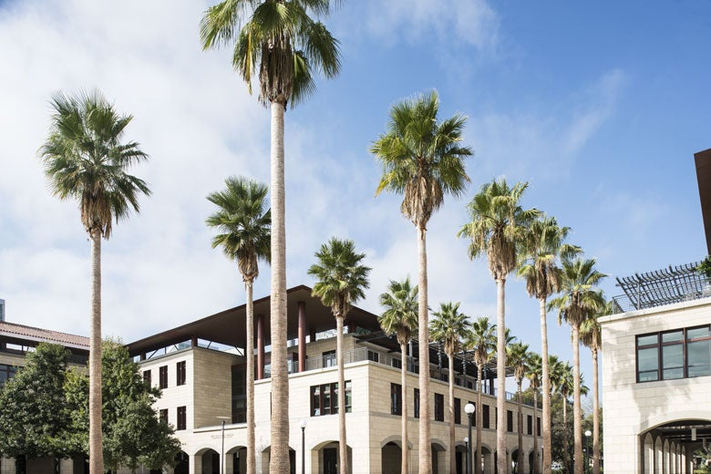 Stanford Engineering building with palm trees / Drew Kelly